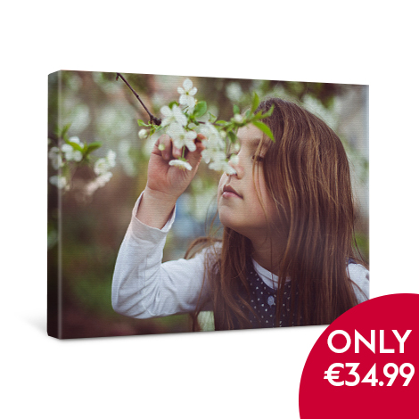 50x40cm Classic Canvas only €34.99