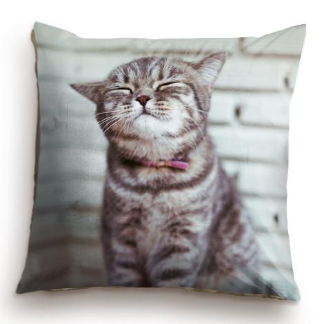 """24x24"""" Cushion"""