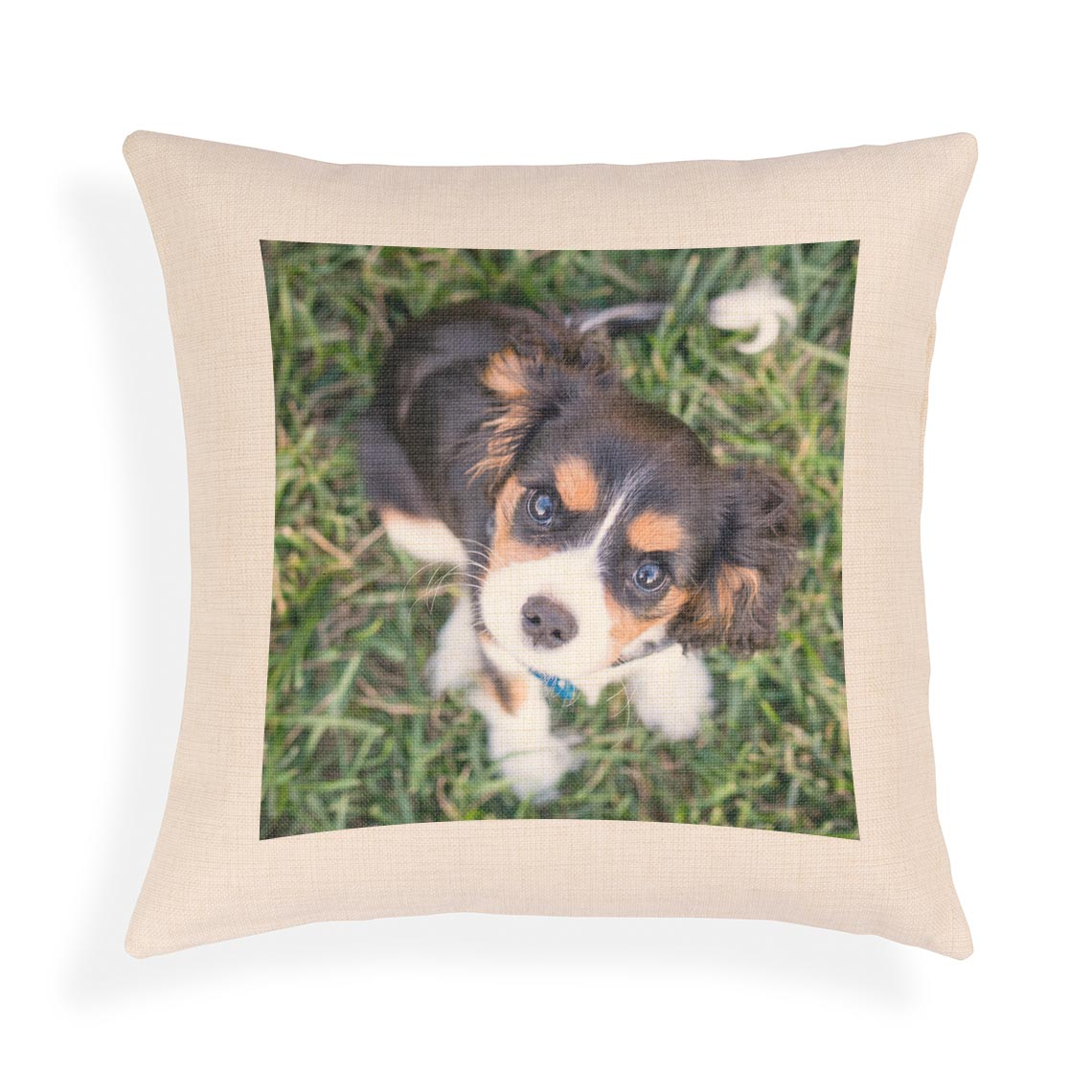 40x40cm Canvas Cushion Cover