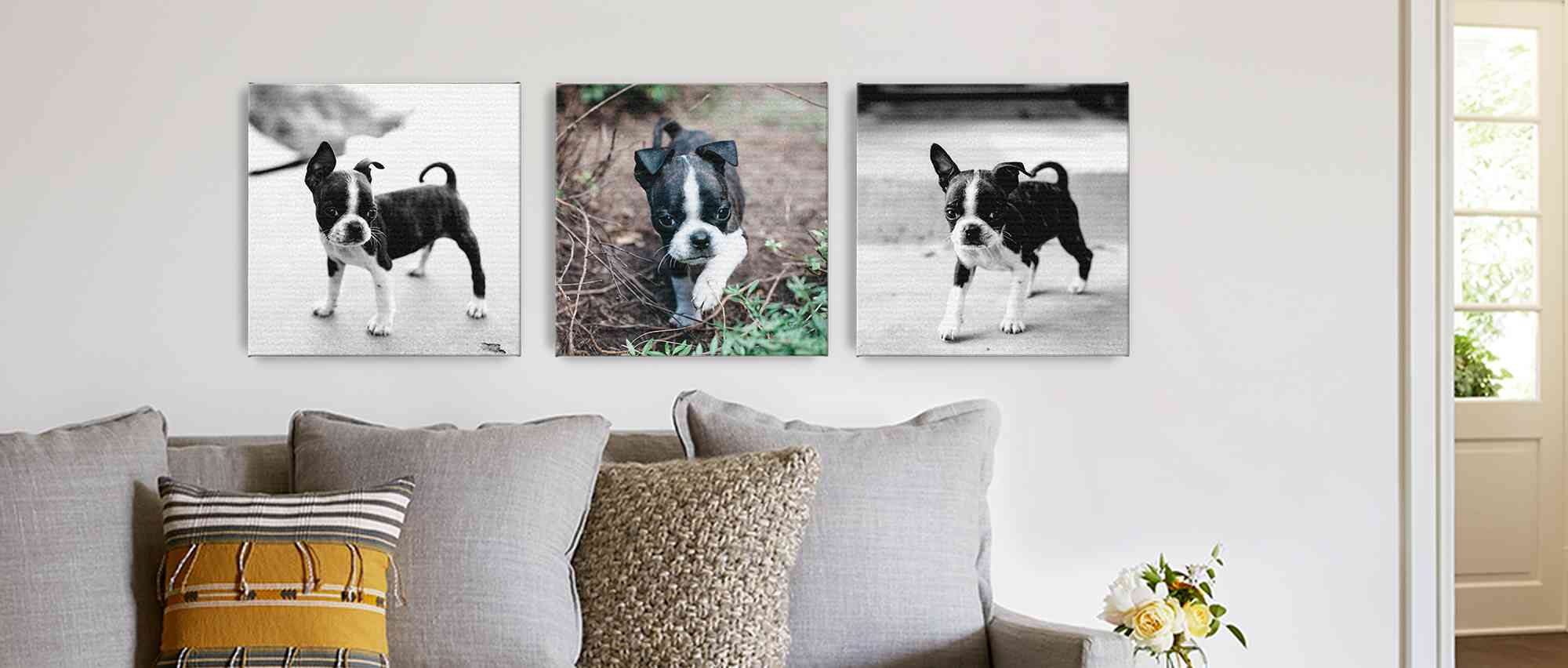Custom Pet Photo Gifts | Photo Gifts for Pets | Snapfish