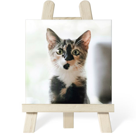 Ceramic Tile with Easel