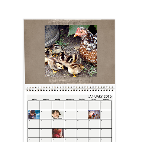8x11 Wall Calendar  sc 1 st  Snapfish : personalized pet gifts for owners - medton.org