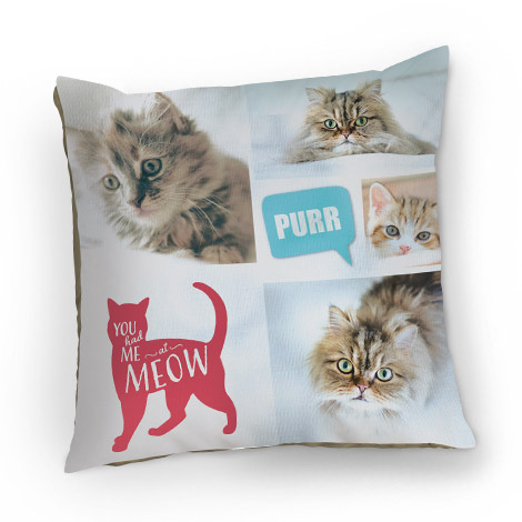 Pet + People Cushions