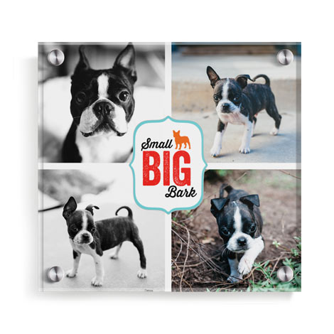"10x10"" Wall-mounted Acrylic Photo Print"