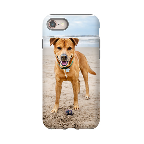 Cases + Covers
