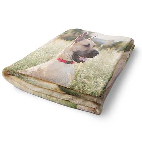 Icon Plush Fleece Photo Blanket