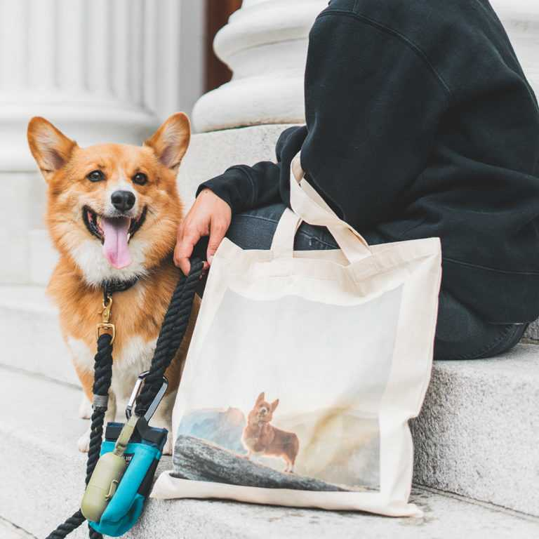Get perfectly pet-coordinated with this totes-amazing pet themed shopping bag