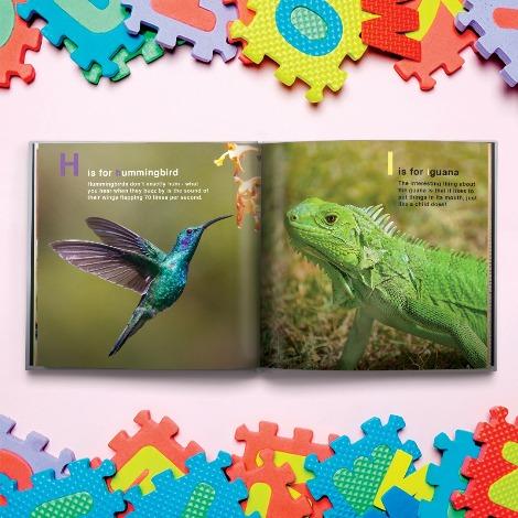 Photo Books: Create Your Personalised Photo Album   Snapfish UK