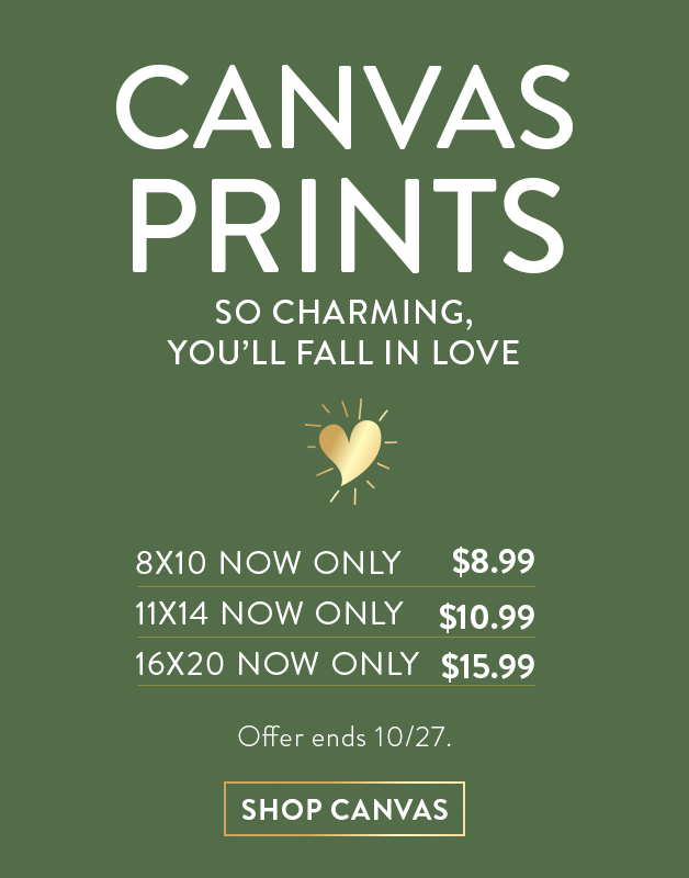 Canvases as low as $8.99