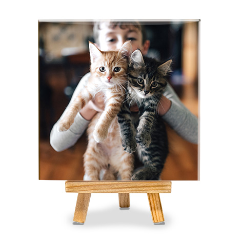 photo tile with boy and two cats