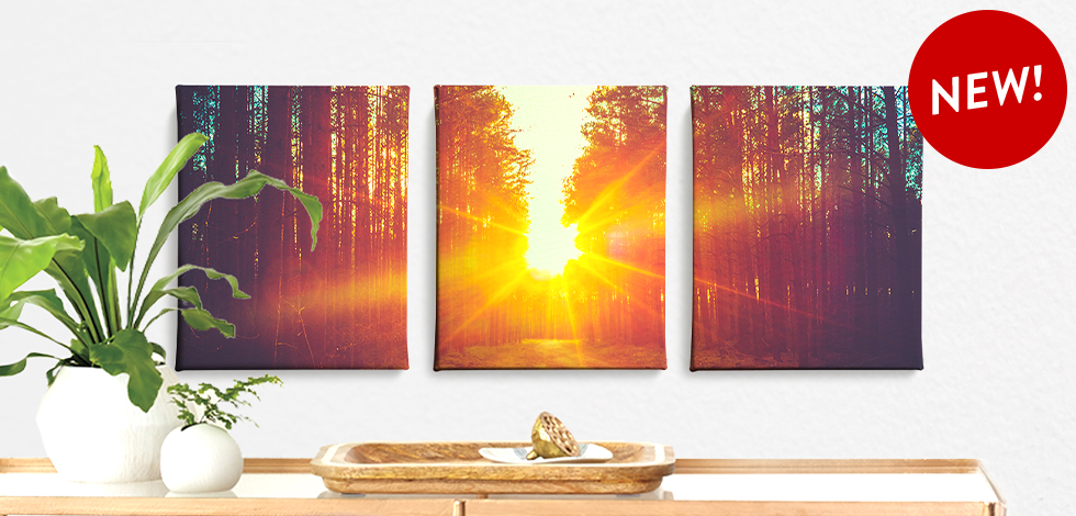 New! Split Canvas Sets