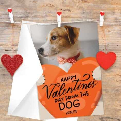 Valentine's day card with photo of dog