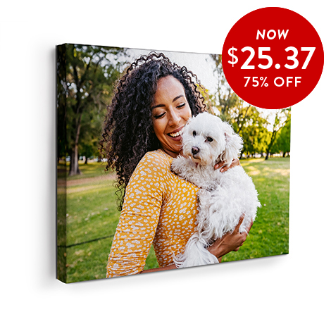 75% off 16x20 Canvas Prints