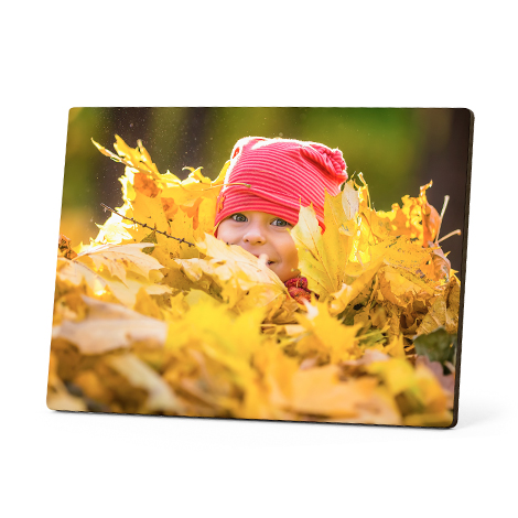 Photo Panels, Table Top