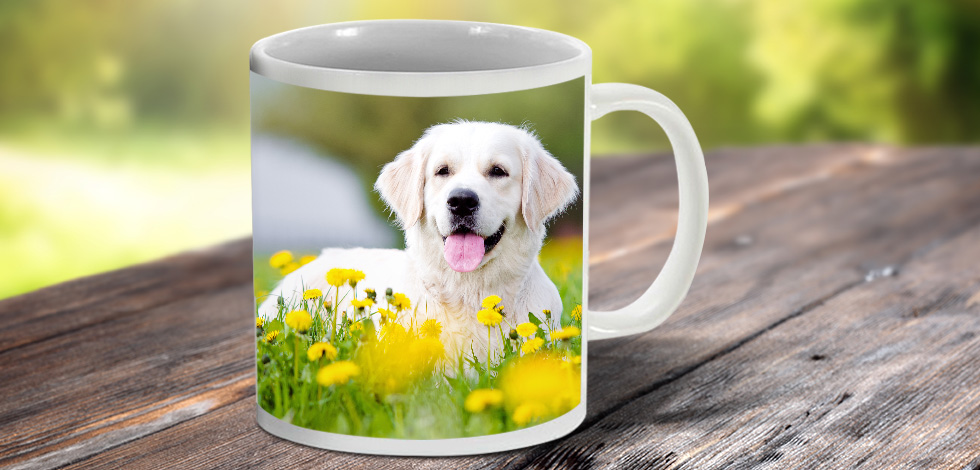 Create A Personalised Photo Mug