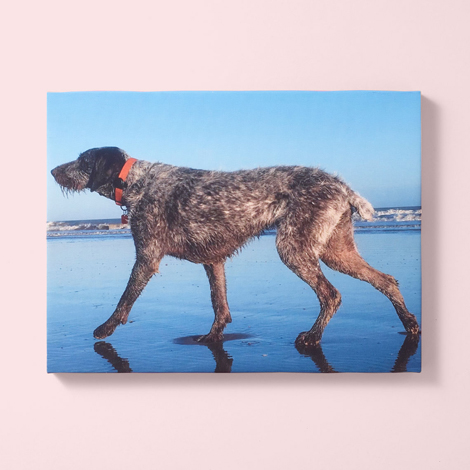 Slim Photo Canvas